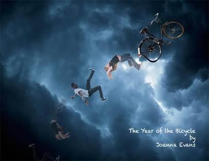 Year of the Bicycle.jpg